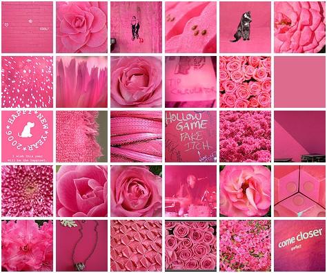 Immagini per il colore DE5580