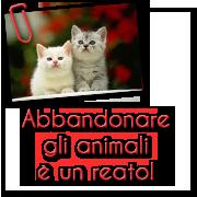 Non abbandonate gli animali